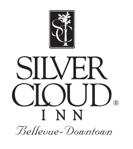 http://powerofplay.us/wp-content/uploads/2017/02/silvercloud-275x308.png
